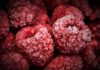Nutritional And Scientific Facts About Raspberries