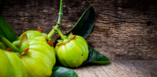 Nutritional And Scientific Facts Garcinia Cambogia