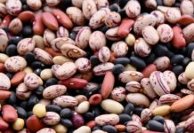 legumes beans must add foods